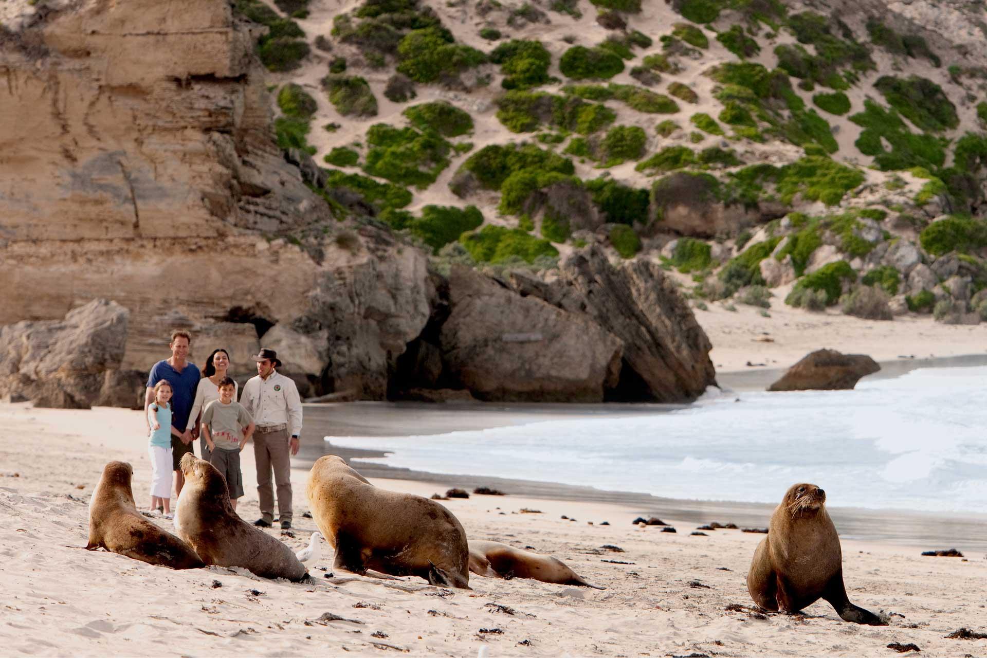 Fleurieu Peninsula & Kangaroo Island