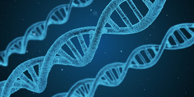Medical Advancements: Genetic Testing Can Lead to A Healthier Life