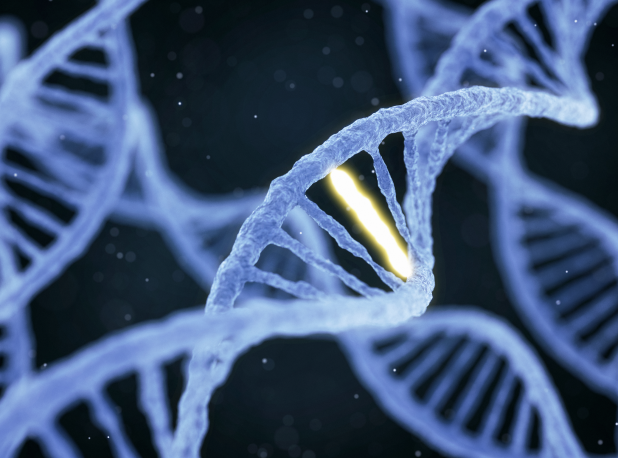 DNA Days are here: navigating genomic tests in primary care